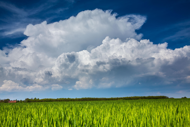 Wetter - Im Westen Regen, im Osten sonnig