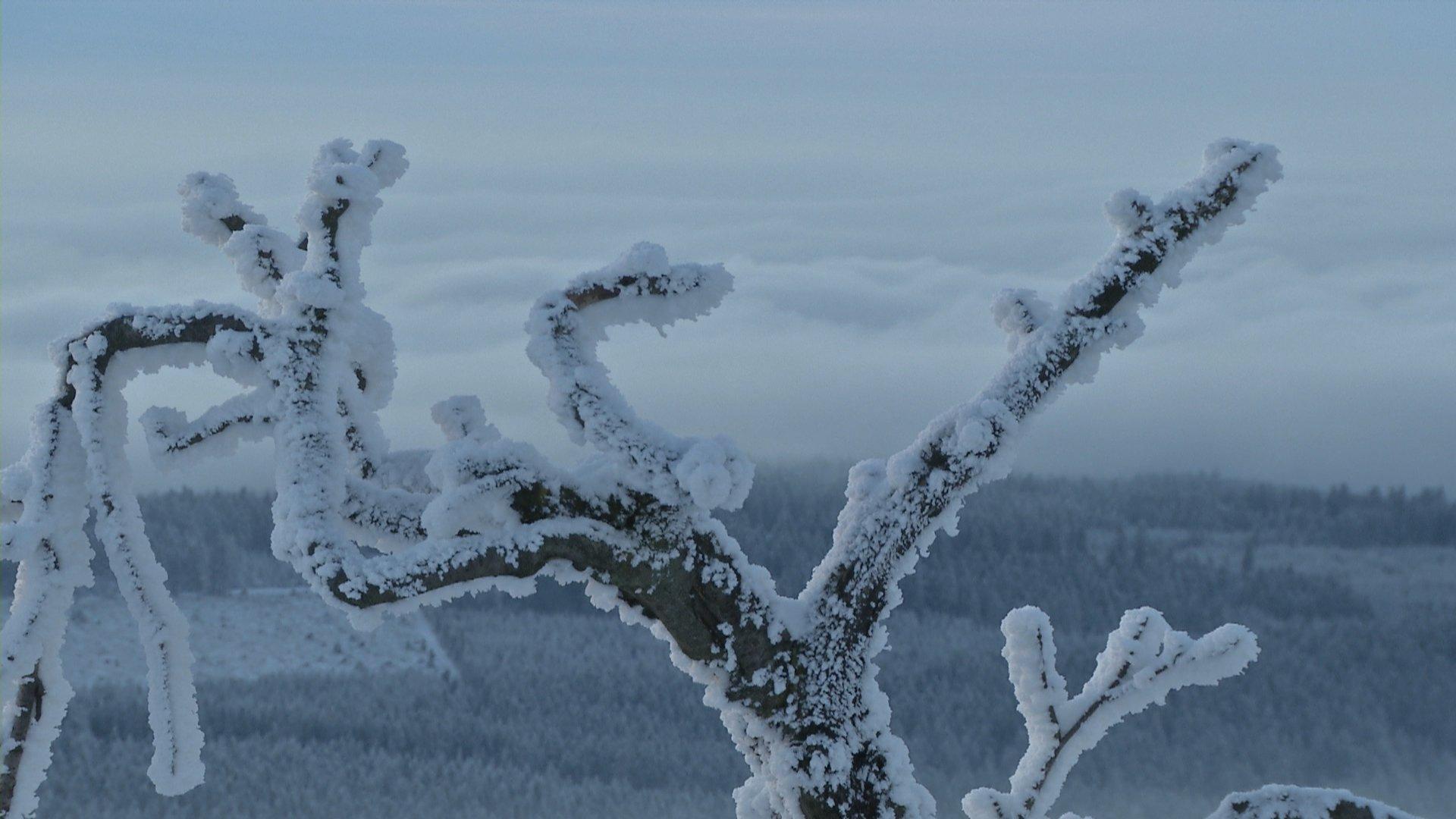 Wäsche trocknen bei Frost?, 2016 - News - Wetter24.de